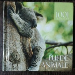 1001 DE FOTOGRAFII -PUI DE ANIMALE