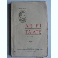 Aripi taiate - Ioan Adam