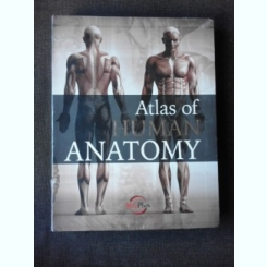 ATLAS OF HUMAN ANATOMY  (TEXT IN LIMBA ENGLEZA)
