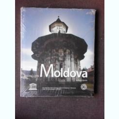 BISERICI DIN MOLDOVA - NEAGU DJUVARA