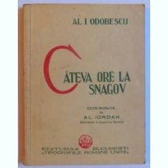 CATEVA ORE LA SNAGOV DE AL. I. ODOBESCU