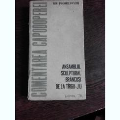 COMEMORAREA CAPODOPEREI, ANSAMBLUL SCULPTURAL BRANCUSI DE LA TIRGUL JIU - ION POGORILOVSCHI