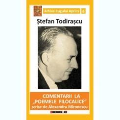 COMENTARII LA POEMELE FILOCALICE - STEFAN TODIRASCU