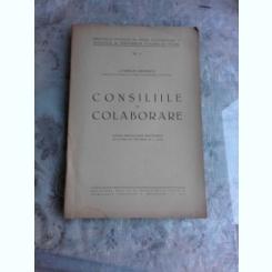 CONSILIILE DE COLABORARE - CORNELIU RUDESCU