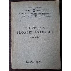 Cultura floarei soarelui - Florica Olteanu