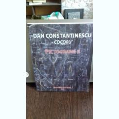 DAN CONSTANTINESCU - COCORUL. PICTOGRAME II