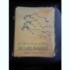 En las arenas - N. Sladkov  (carte pentru copii, text in limba spaniola)