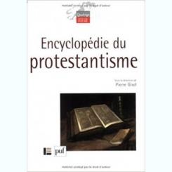 ENCYCLOPEDIE DU PROTESTANTISME - PIERRE GISEL  (CARTE IN LIMBA FRANCEZA)