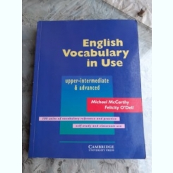 ENGLISH VOCABULARY IN USE - MICHAEL MCCARTHY