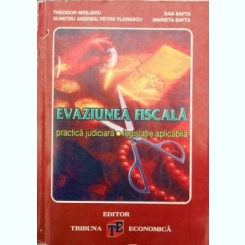 EVAZIUNE FISCALA, THEODOR MREJERU