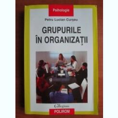 GRUPURILE IN ORGANIZATII - PETRU LUCIAN CURSEU