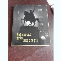 HOINARIND PRIN BUCURESTI, ALBUM FOTO