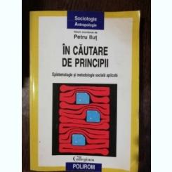 IN CAUTARE  DE PRINCIPII - PETRUT ILUT