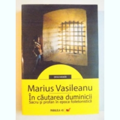 IN CAUTAREA DUMINICII - MARIUS VASILEANU