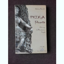 INDIA PICANTA, PELERINAJ LA MIRODENII SI TEMPLE - ADELINA PATRICHI, FOTOGRAFII DE ARTUR STRATAN