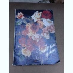 Indrumator tehnic si catalog pentru folosirea materialului saditor ornamental - Gheorghe Pacea