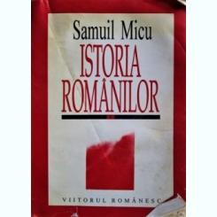 ISTORIA ROMANILOR, SAMUIL MICU