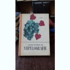 LUCRARI PRACTICE DE AMPELOGRAFIE - V. DVORNIC