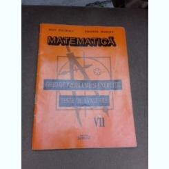 Matematica, ghid de probleme si exercitii, teste de evaluare clasa a VII-a - Ioan Pelteacu