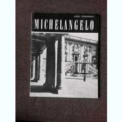 MICHELANGELO - AUREL TEODORESCU
