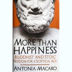MORE THAN HAPPINESS, ANTONIA MACARO (CARTE IN LIMBA ENGLEZA)