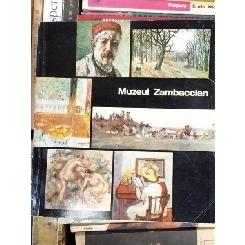 MUZEUL ZAMBACIAN , RADU BOGDAN