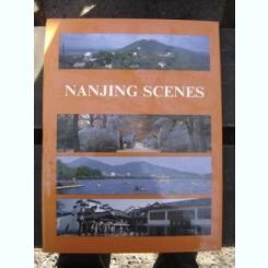 NANJING SCENES - ALBUM