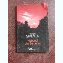 NEBUNUL DIN BERGERAC - GEORGES SIMENON