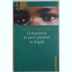 O DUMINICA IN JURUL PISCINEI LA KIGALI DE GIL COURTEMANCHE, 2004