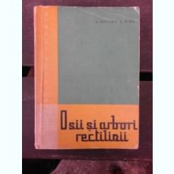 OSII SI ARBORI RECTILINII - A. RIPIANU