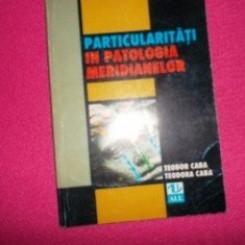 Particularitati in patologia meridianelor/Teodor Caba,Teodora Caba