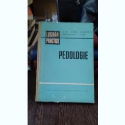 PEDOLOGIE - ST. PUIU  LUCRARI PRACTICE