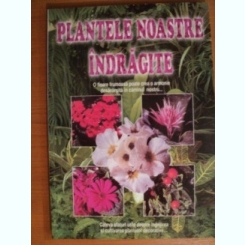 PLANTELE NOASTRE INDRAGITE,