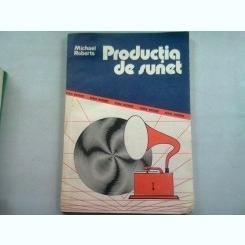 PRODUCTIA DE SUNET - MICHAEL ROBERTS