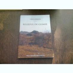 RELIEFUL DE GLIMEE - VIRGIL GARBACEA