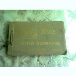ROMA, FORO ROMANO - ANNESSI  (ALBUM FOTOGRAFIE)