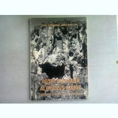 ROSIA MONTANA - ALBURNUS MAIOR. CETATEA DE SCAUN A AURULUI ROMANESC - AUREL SINTIMBREAN