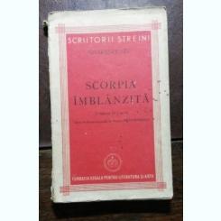 SCORPIA IMBLANZITA - SHAKESPEARE