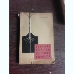 SFATURI PENTRU CULTURA POMILOR - A. NEGRILA