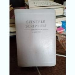 SFINTELE SCRIPTURI, TRADUCEREA LUMII NOI