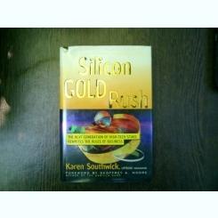 Silicon Gold Rush - karen Southwick