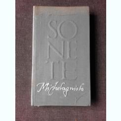 SONETE - MICHELANGELO