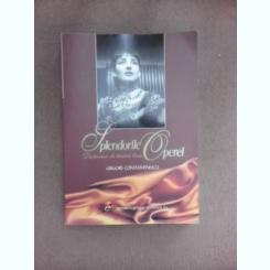 Splendorile operei, dictionar de teatru liric - Grigore Constantinescu  (cu dedicatie)