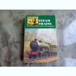 STEAM TRAINS. A BOOK OF 30 POSTCARDS