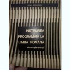 Stefan Radulescu - Instruire programata la limba romana