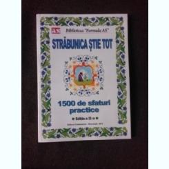 STRABUNICA STIE TOT - 1500 SFATURI PRACTICE