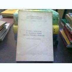 Studiul geologic al bazinului Rosia (muntii Padurea Craiului) - Victoria Todirita Mihailescu