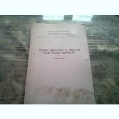 STUDIUL GEOLOGIC AL REGIUNII VALEA PUTNEI GIUMALAU - VIOREL ERHAN