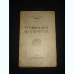 TERMINOLOGIE GEOGRAFICA - I. ROSCA
