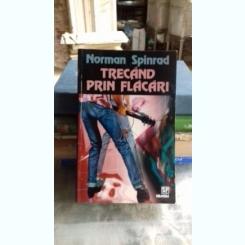 TRECAND PRIN FLACARI - NORMAN SPINRAD